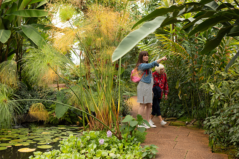 People learning in the University of Dundee Botanical Garden